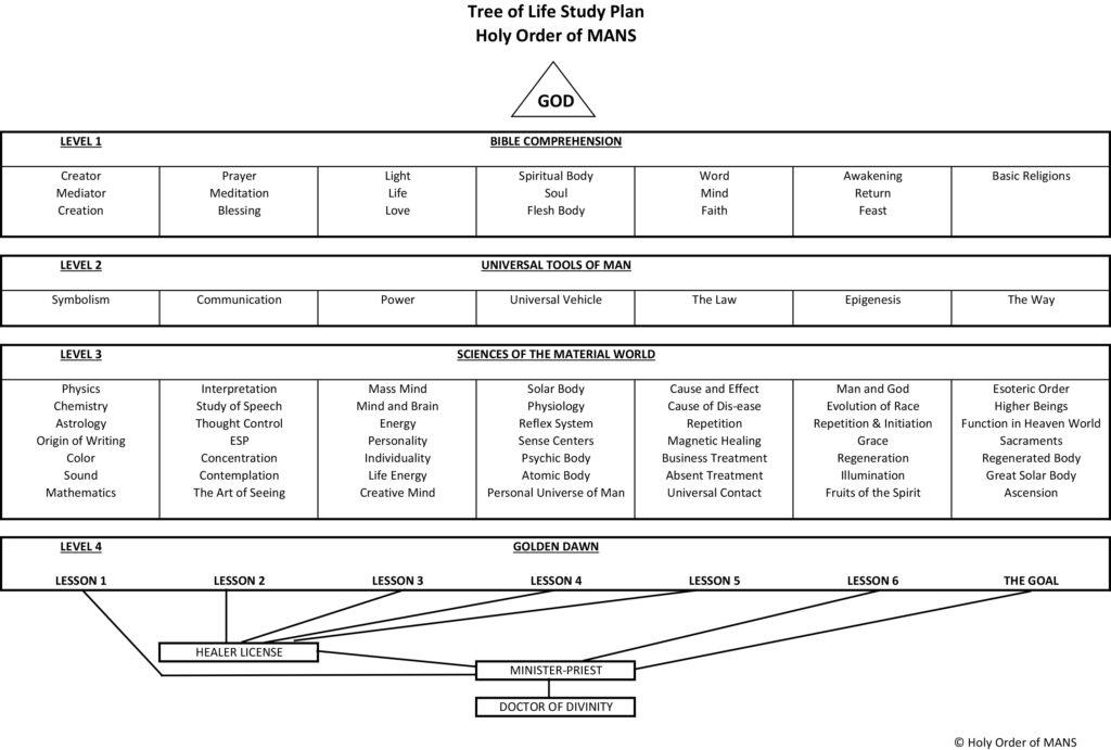 HOOM Tree of Life Study Plan