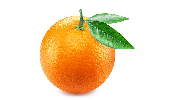 the orange spiritual exercise